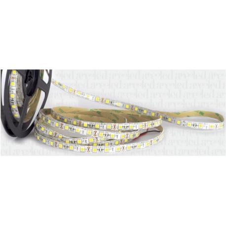 STRISCE LED 5050 72W 12Vdc IP54